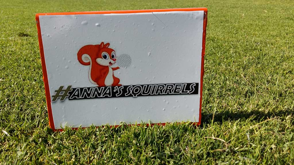 Annas Golf Squirrels